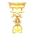 Shriner Masonic Breast Jewel - MASJ118