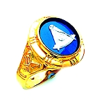 Past Master Masonic Ring - HOM263PM