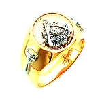 Past Master Masonic Ring - HOM591PM