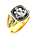 Past Master Masonic Ring - HOM593PM