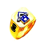 Past Master Masonic Ring - MAS2044PPM