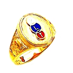 Odd Fellows Ring HOM269OF