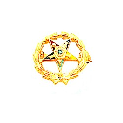 Order of the Eastern Star Masonic Lapel Pin - HOM6413P