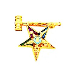 Order of the Eastern Star Masonic Lapel Pin - HOM6435P